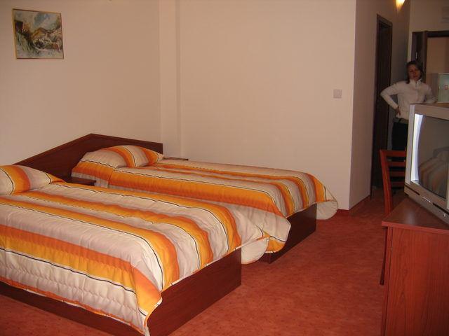 Dafovska Hôtel - Single room